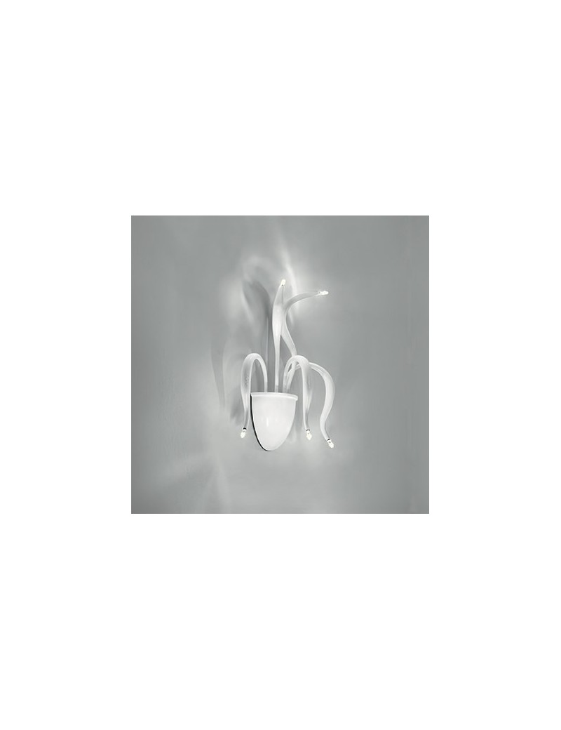 IDEAL LUX: Elysee applique 5 luci luci bracci in fusione di metallo bianco in offerta