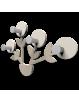 CALLEADESIGN: Appendiabiti da parete design pianta legno tortora in offerta