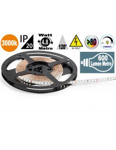 Stricia LED 4,8w 3000k bobina dimmerabile IP20 adesiva flessibile 70 led metro