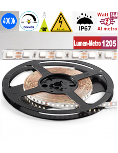 Stricia LED 14,4w 4000k bobina 5mt dimmerabile IP67 adesiva flessibile 72 led metro outdoor