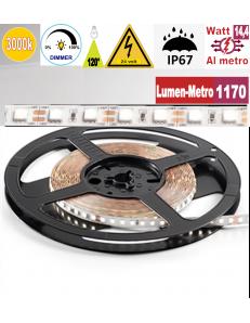 Stricia LED 14,4w 3000k bobina 5mt dimmerabile IP67 adesiva flessibile 72 led metro outdoor