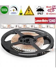 Stricia LED 14,4w 5000k bobina 5mt dimmerabile IP67 adesiva flessibile 72 led metro outdoor