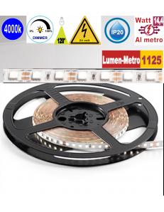 Stricia LED 14,4w 4000k bobina 5mt dimmerabile IP20 adesiva flessibile 72 led metro