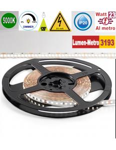 Stricia LED 23w 5000k bobina 5mt dimmerabile IP20 adesiva flessibile 224 led metro